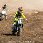 cactus-state-rd3-7396